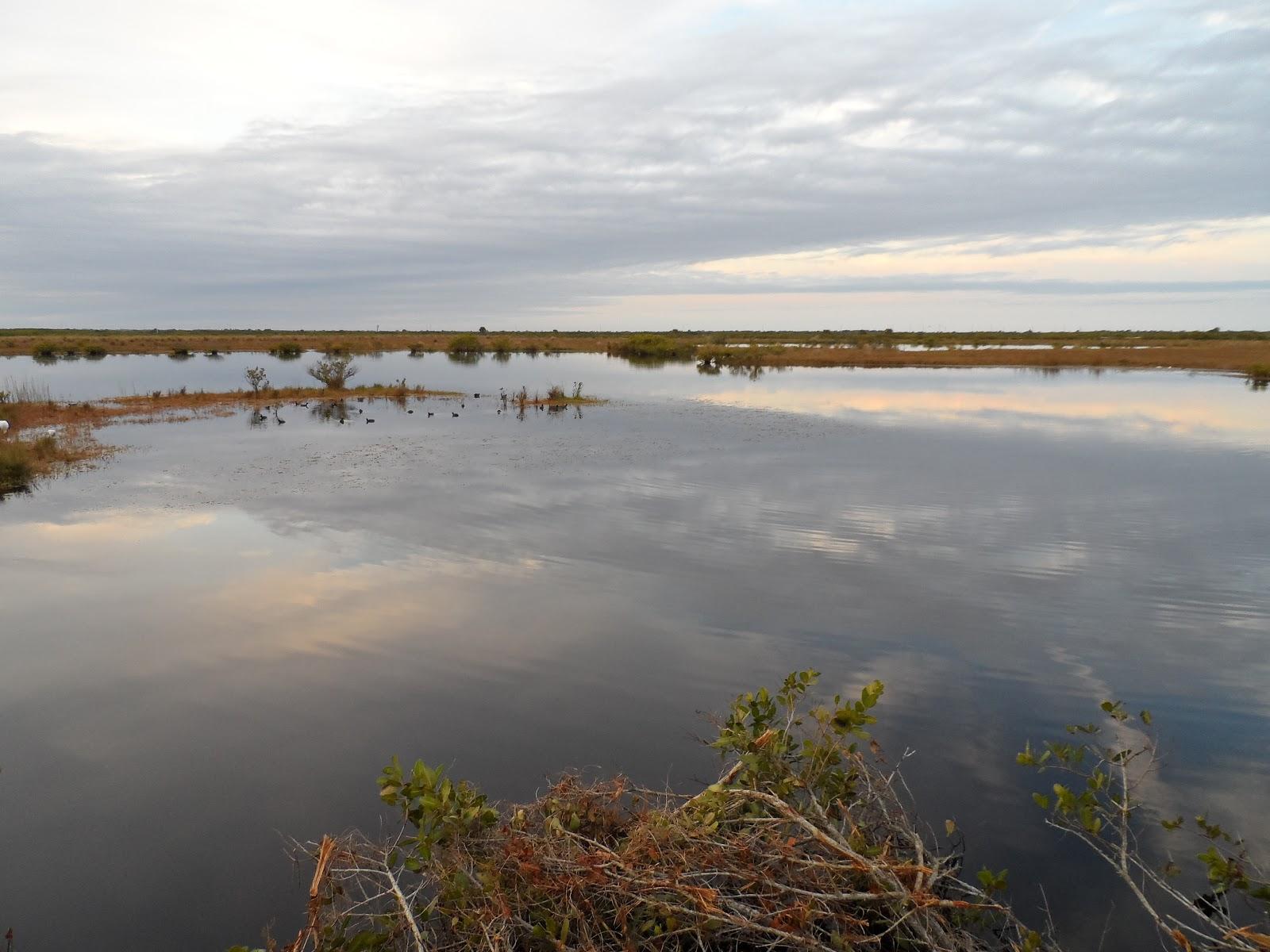 Mosquito lagoon indian river fishing new years eve for Indian river fishing