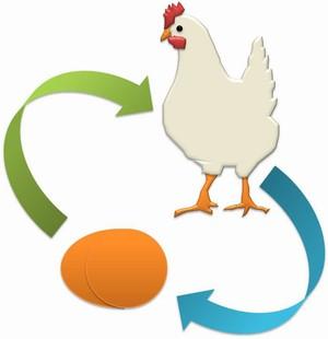 Mana Duluan, Ayam atau Telur