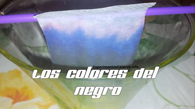 Experimentos Caseros colores negro tinta agua
