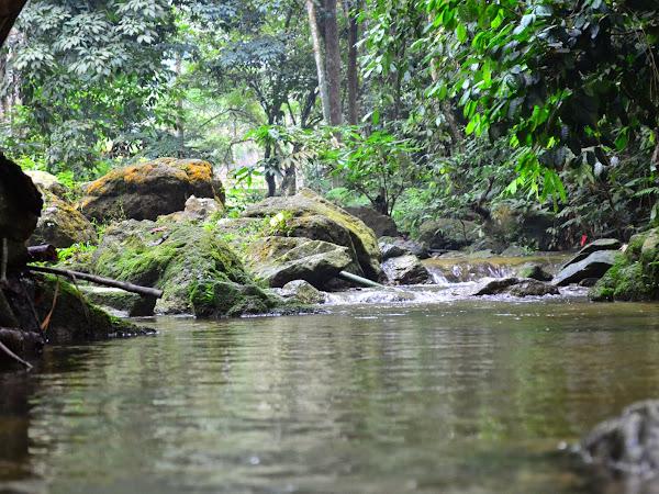 Lepak Hari Minggu : Sungai Kemensah