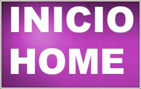INICIO / HOME