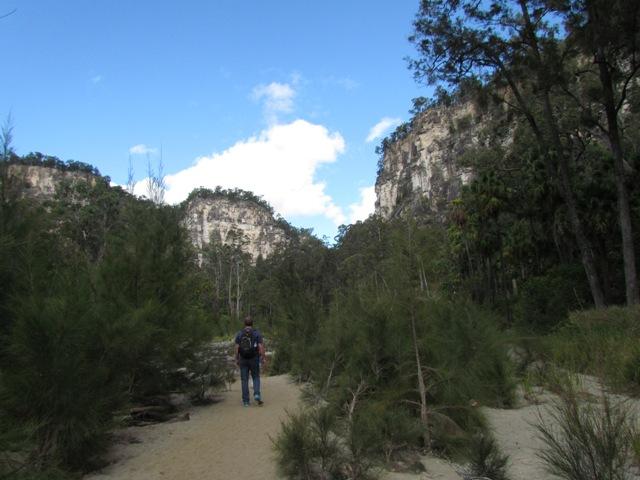 Sandstone cliffs of Carnarvon Gorge