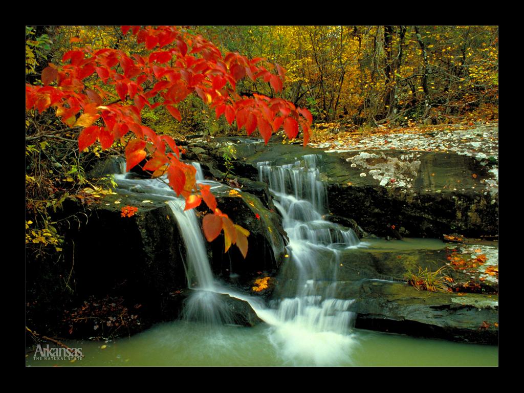 Hd Wallpapers Natural Beauty
