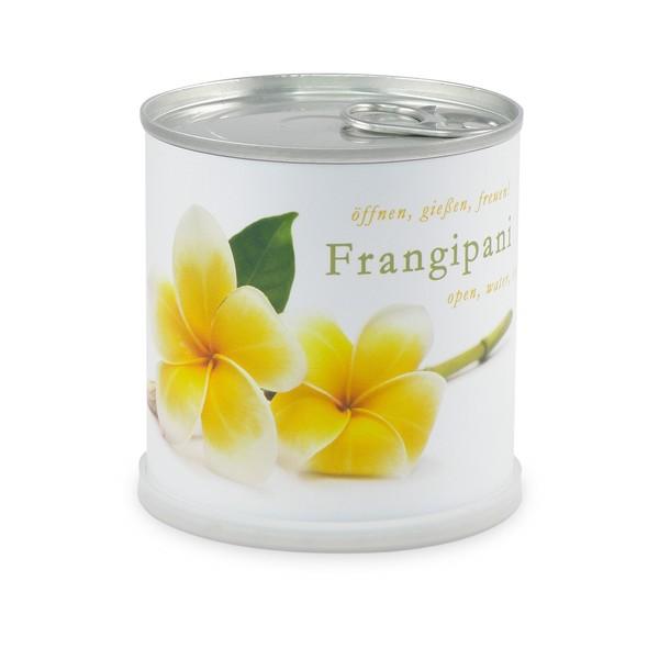 Sicherlich Ist Es Eine Ausgefallene Geschenkidee Für 5,99 Euro, Die  MacFlowers Für Verschiedenen Blumen Und Pflanzen Anbietet. Bei Zum Beispiel  Sonnenblumen ...