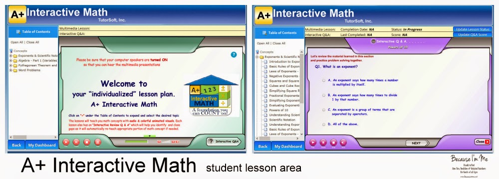 A+ Interactive Math student lesson area