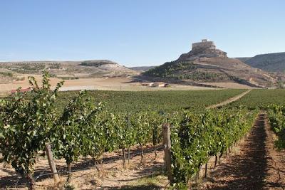 Ribera del Duero, tierras de Bodegas Comenge. Blog Esteban Capdevila