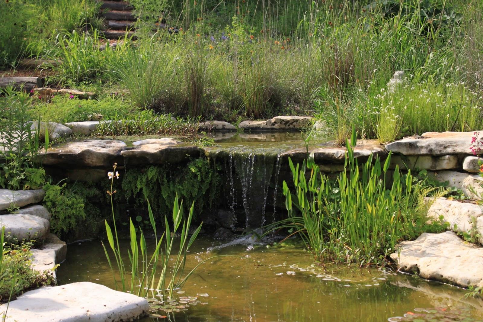 Natural Looking Backyard Ponds : RockOakDeer Gardens on Tour in Austin Westridge Drive