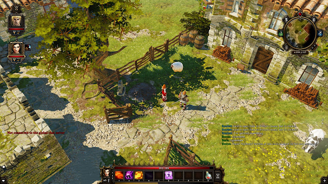 Divinity: Original Sin HD Wallpaper