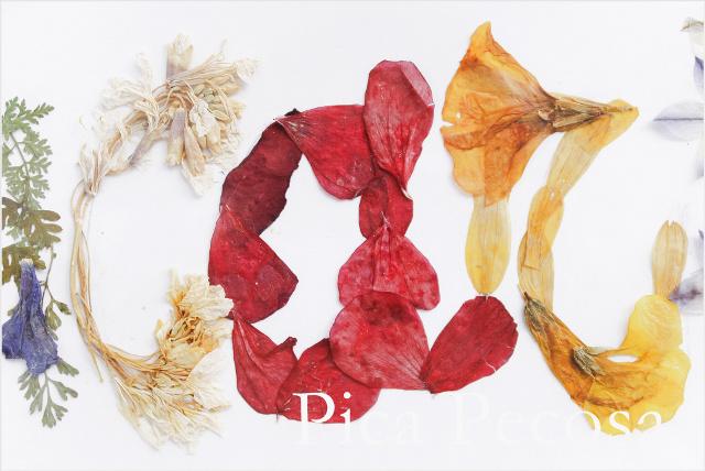 cuadro-con-nombre-hecho-flores-secas-prensadas-diy-05
