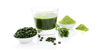 alimentos ricos em clorofila