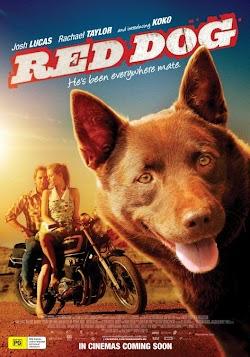 Chú Chó Đỏ - Red Dog (2011) Poster