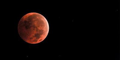 Bulan - [www.zootodays.blogspot.com]