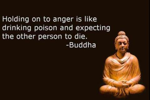 Buddha Thought for the Day