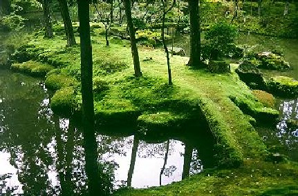 Willow Bee Inspired: Garden Design No. 10 - Moss Gardens