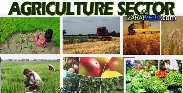 the underutilized labor from agriculture of south asians 48 agricultural technologies essay examples from academic writing company eliteessaywriters™ get more argumentative, persuasive agricultural technologies essay samples and other research papers after sing up.