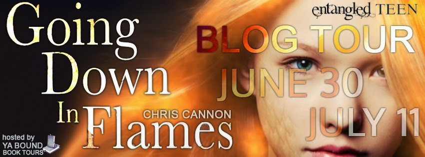 http://yaboundbooktours.blogspot.com/2014/05/blog-tour-sign-up-going-down-in-flames.html
