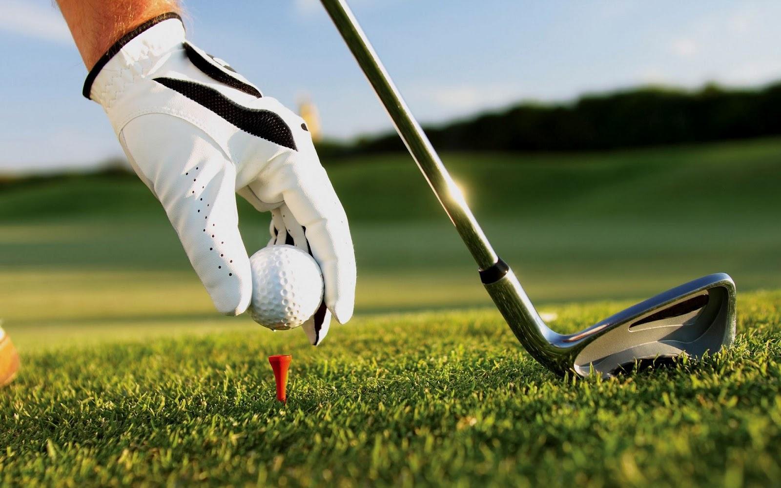 http://3.bp.blogspot.com/-vK5CVUeYYss/UCYuegO0JbI/AAAAAAAAMKk/E59LgoVMy88/s1600/golf-stick.jpg