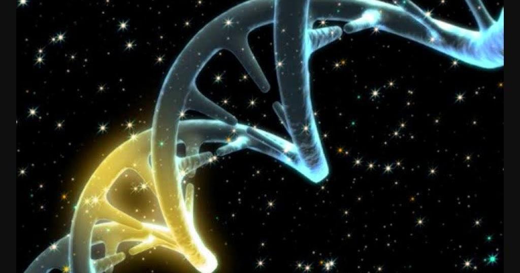 biolog u00eda   la ciencia del futuro  adn recombinante