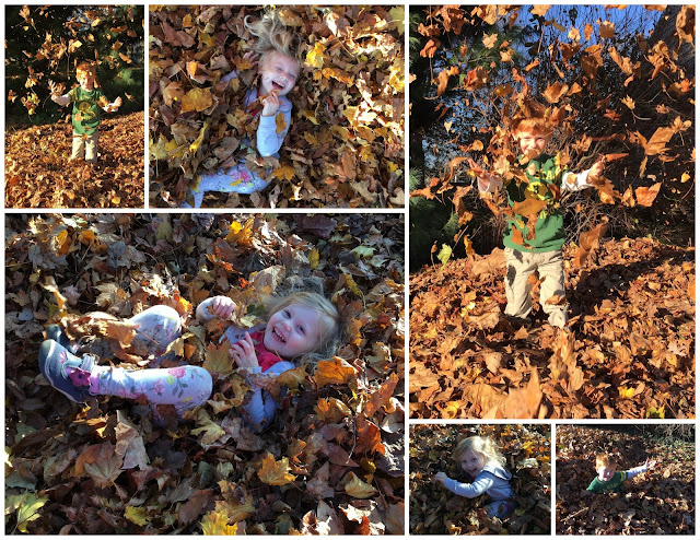 Porter & Stella in the Leaves