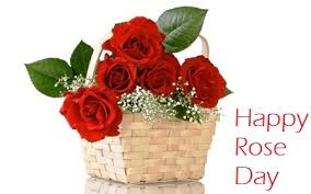 Happy-Rose-Day-2016-Images-Pictures-Status-for-Facebook-Whatsapp-Twitter-2