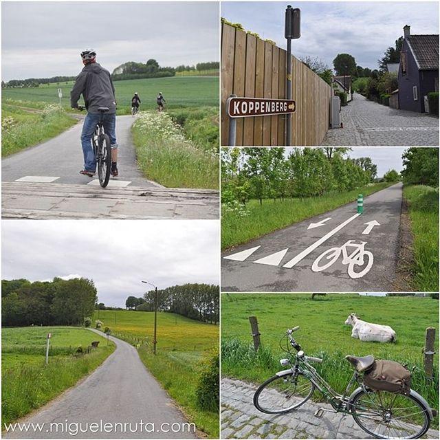 ruta-bici-ardenas-flamencas