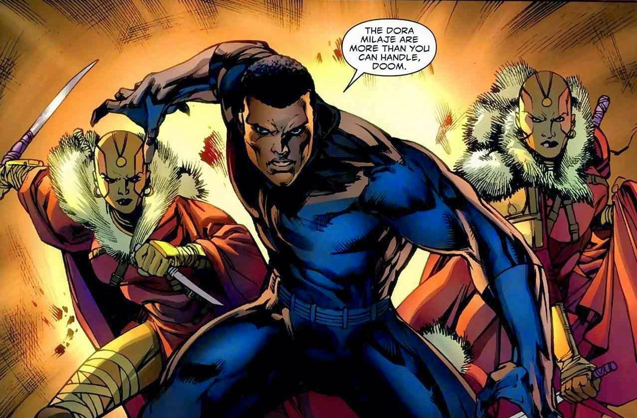 Výsledok vyhľadávania obrázkov pre dopyt black panther bodyguards