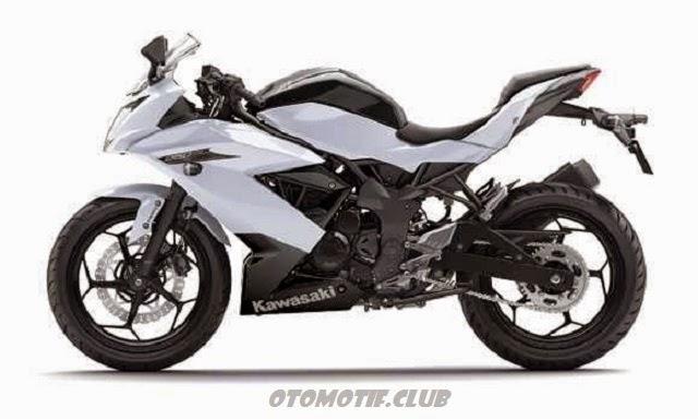 Kawasaki Ninja RR Mono white