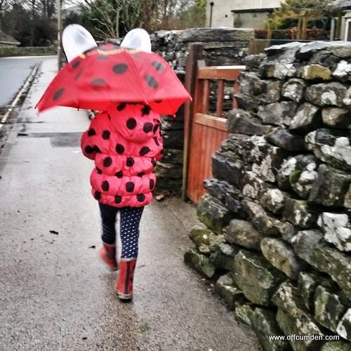 ladybird umbrella