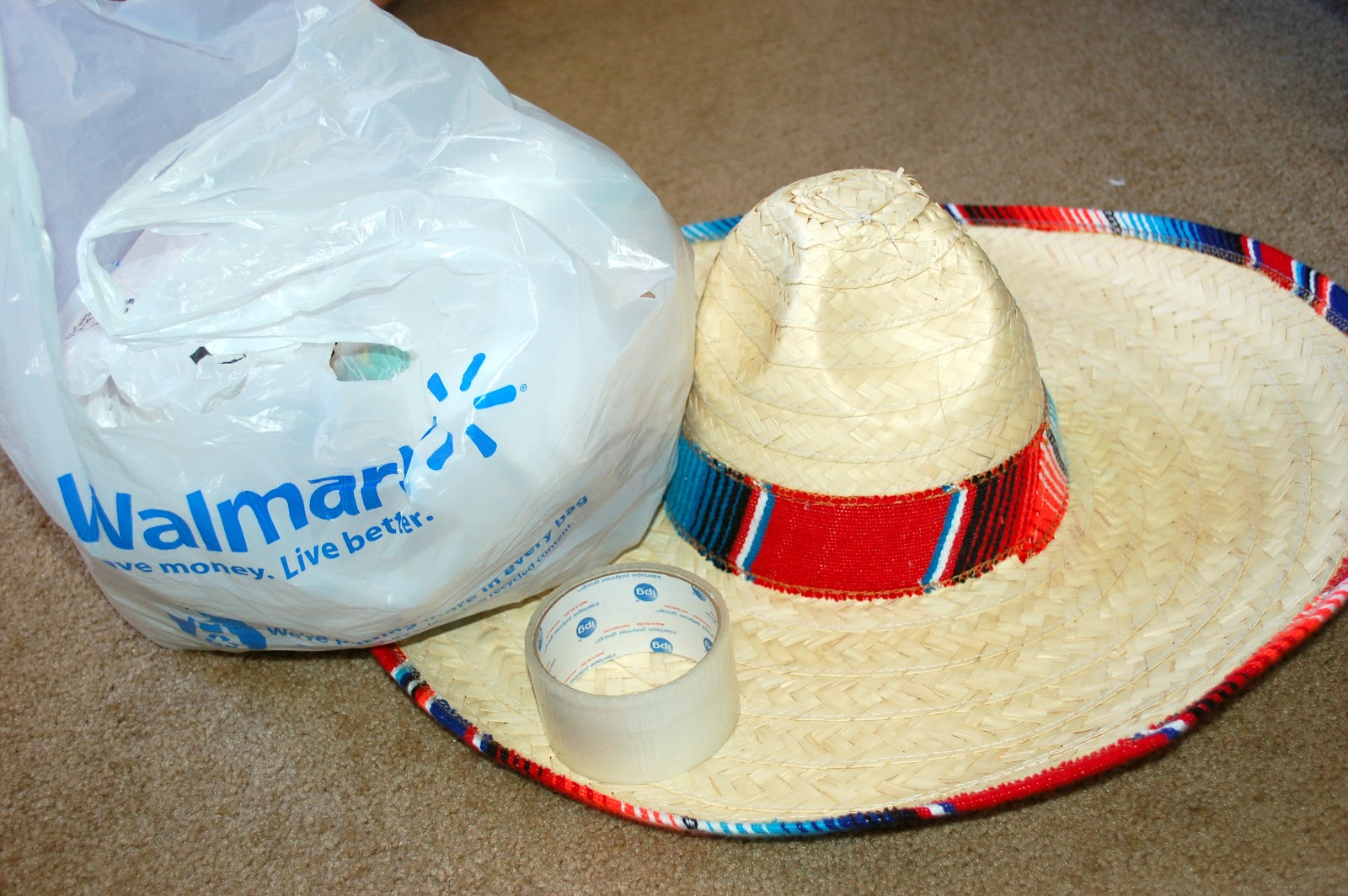 max and i sat around and balled up old grocery bags stuffed them onto the sombrero as tightly as we could