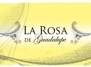 La rosa de Guadalupe EN VIVO