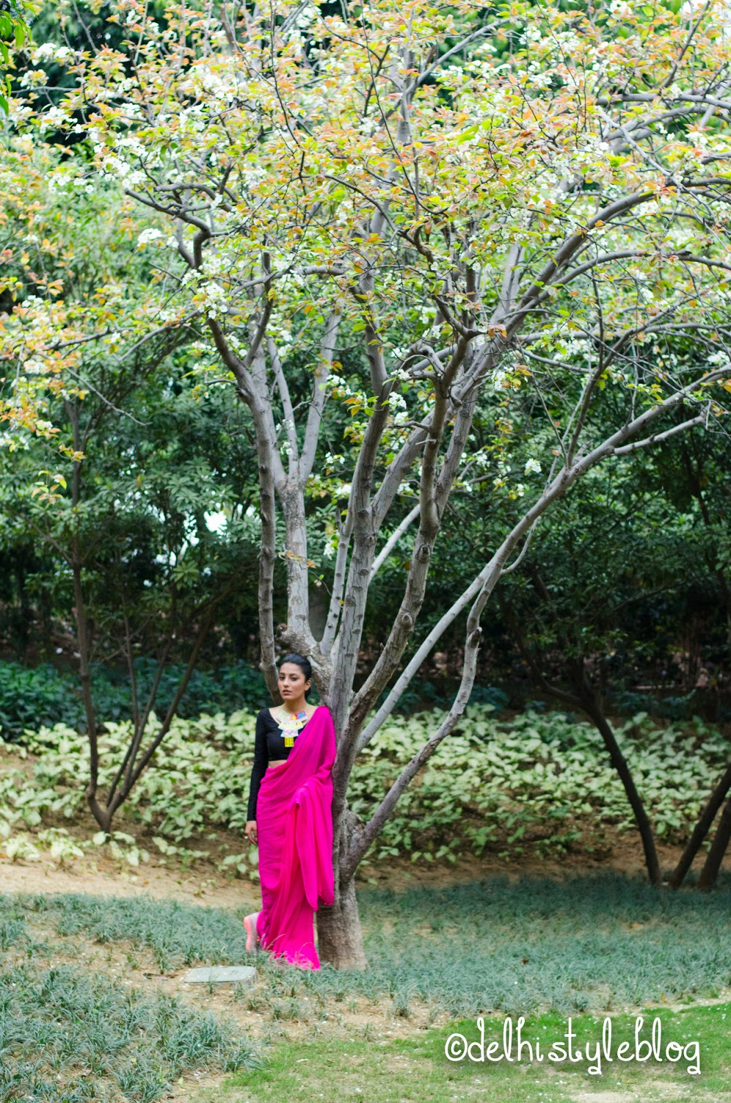 Peach tree Blossom at Dusit Devrana