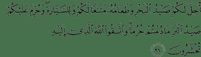 Surat Al-Maidah Ayat 96