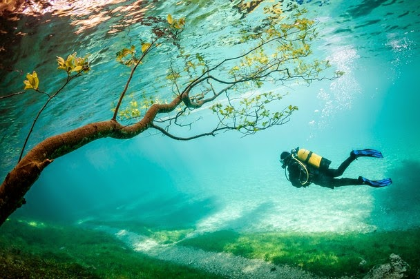 National Geographic Traveler Photo Contest 2014, Diver in Magic Kingdom