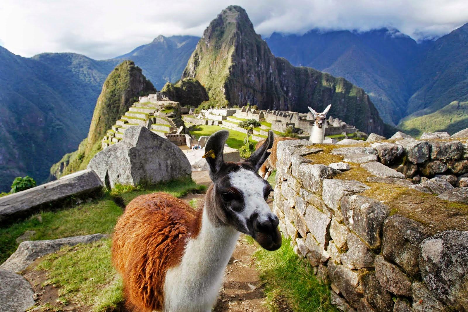 Картинки по запросу templos del imperio inca