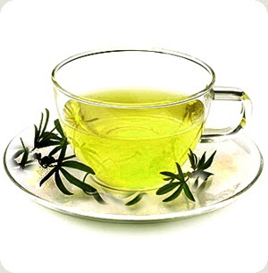 Green Tea in Healthy Diet Plan