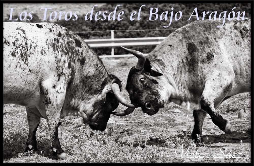 Los Toros desde el Bajo Aragón