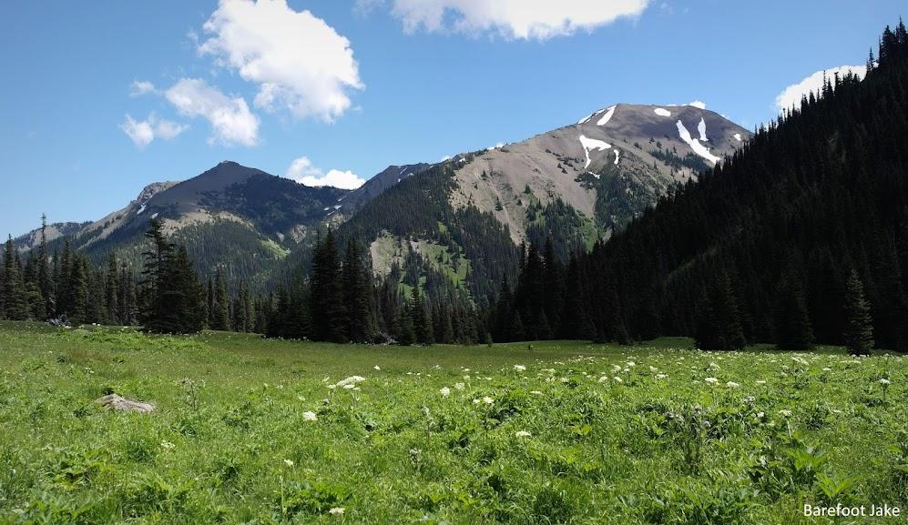 Badger Valley