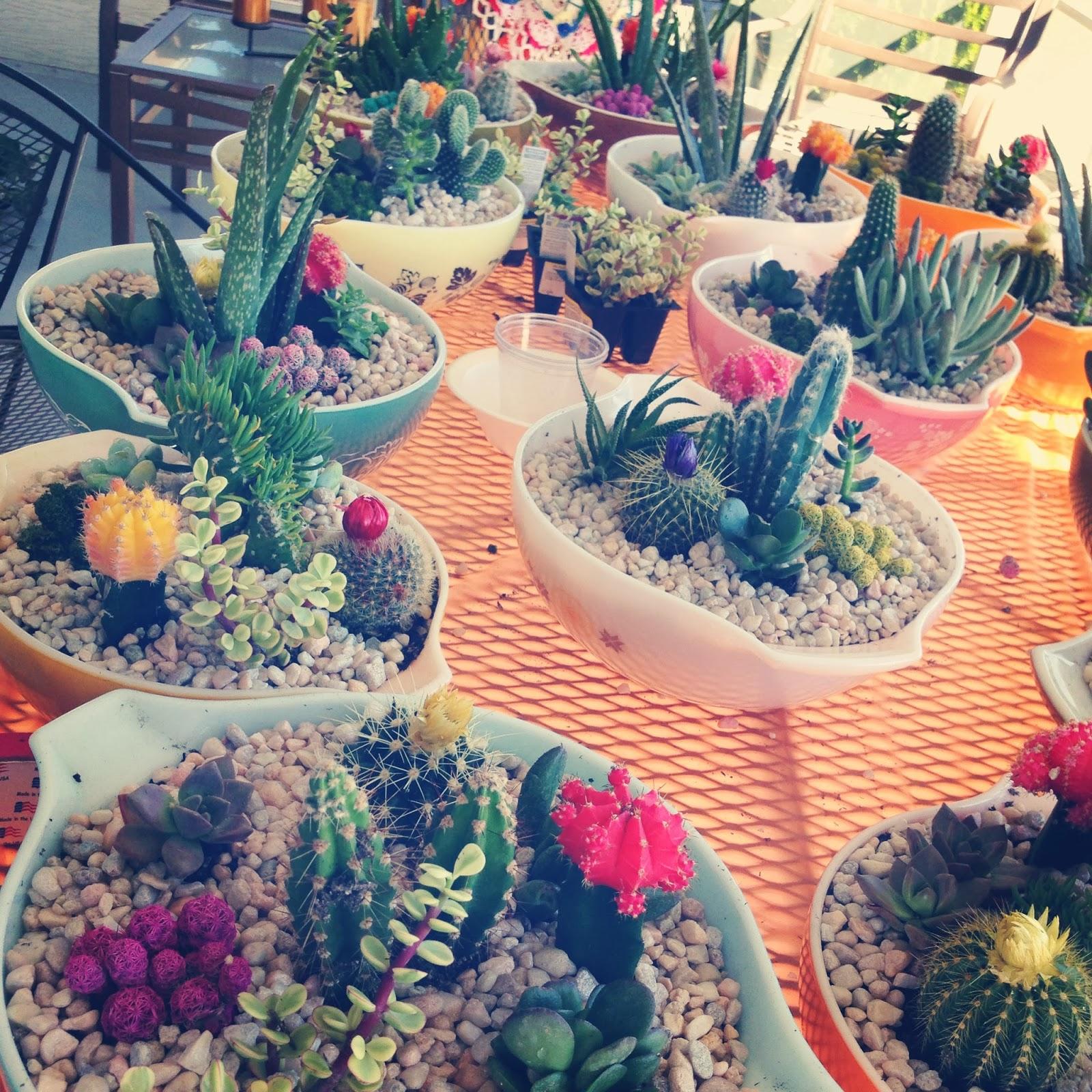 loose shoelaces diy cacti wedding centerpieces. Black Bedroom Furniture Sets. Home Design Ideas