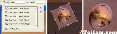 Nút crop trong Photoshop. Người dùng có thể cắt và xoay chiều ảnh theo ý muốn.