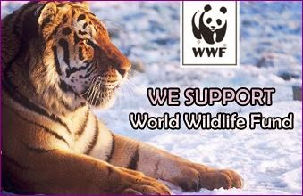 We Support WWF