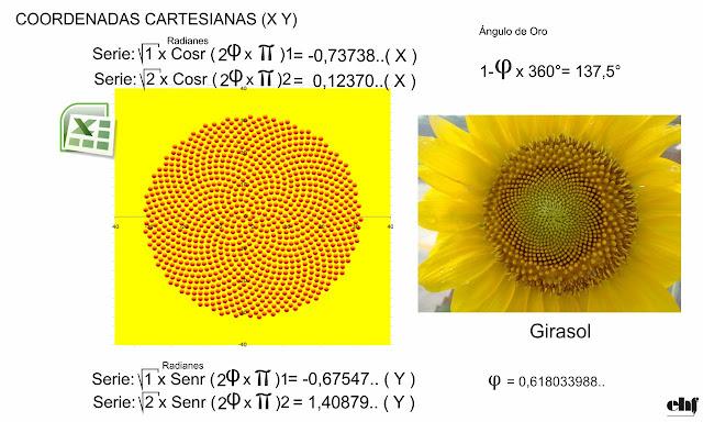 Angulo Aureo y Fibonacci