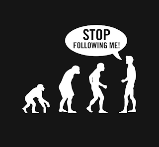 """L'image représente de façon schématique l'évolution de l'espèce humaine telle qu'elle a pu être pensée après les découvertes de Charles Dawin sur l'origine des espèces et les mécanismes  de sélection naturelle dans son célèbre livre """"On the Origin of Species by Means of Natural Selection, or the Preservation of Favoured Races in the Struggle for Life"""". Ce schéma représente cinq silhouettes, la premières évoquant celle d'un singe et la dernière celle d'un homme debout, un attaché-case à la main et une main à l'oreille qui laisse penser clairement que l'homme utilise un téléphone portable. Entre ces deux silhouettes se trouvent donc trois autres silhouettes censées représentées la progression de la plus ancienne à la plus récente avec évolution progressive. Ces silhouettes se détachent particulièrement sur fond noir puisqu'elles sont d'un blanc immaculé. De plus, elles se reflètent sur le sol qui semble brillant. L'image est donc simple, mais particulièrement esthétique, autant que nécessaire pour accompagner le poème très stylisé lui aussi du Marginal Magnifique intitulé avec humour """"Ton père le singe"""".  Dans ce poème, le grand poète moderne évoque ses semblables qu'il juge aussi évolués que les premiers hominidés."""