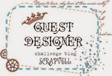 Приглашённый дизайнер