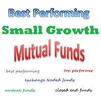 Top Performer Small Growth Stock Mutual Funds