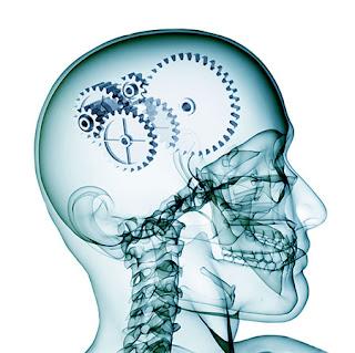 внутренняя работа мозга