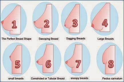 Macam-macam jenis bentuk payudara wanita