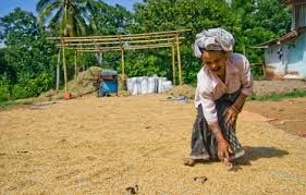 Feminis Indonesia Berbicara Kedaulatan Desa