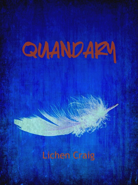 <em>QUANDARY</em> (short fiction)