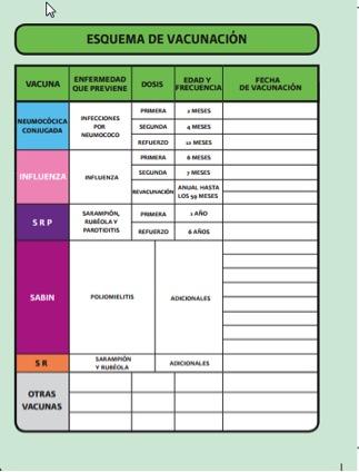 Cartilla Nacional De Vacunacion Mexico   LZK Gallery