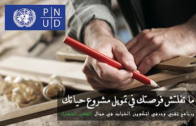 UNDP Appel à Candidature : Sélection 720 Jeunes